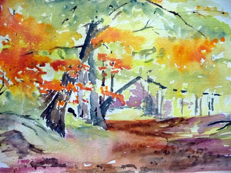 Autumn Colours