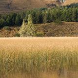 Loch cill na Chroish