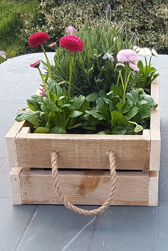 crate box for storage or display