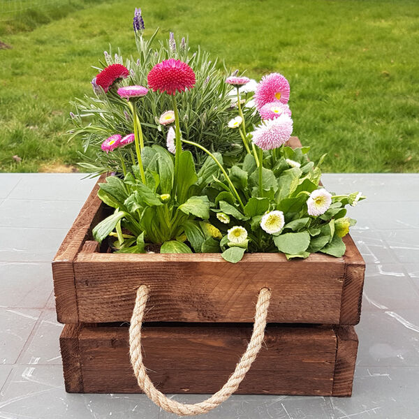 crate box with flowers in rope handled