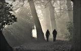 Shadows and Mist