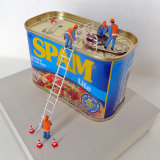 The SPAM Inspectors