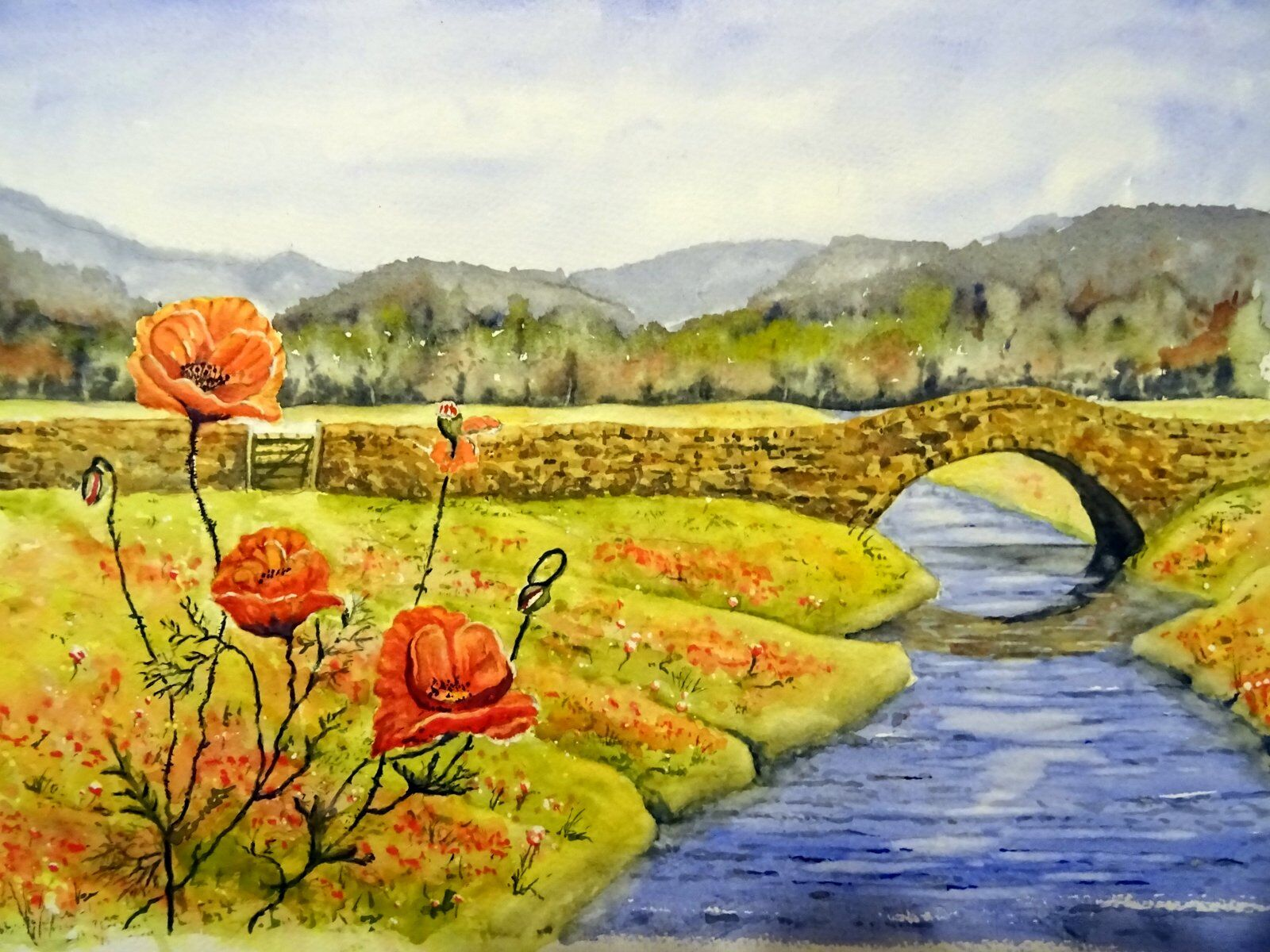 Poppies and the Stream