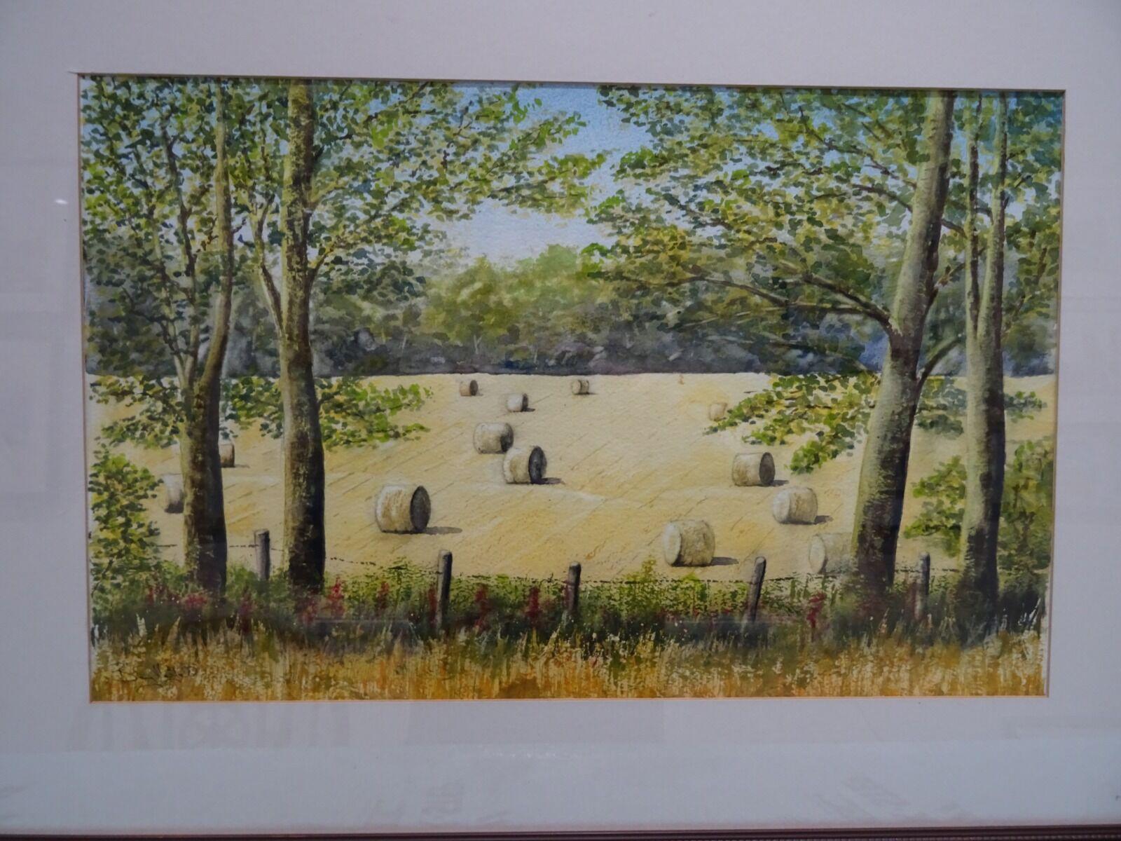 Sewerby Fields