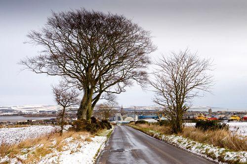 Montrose from Craig (Winter)