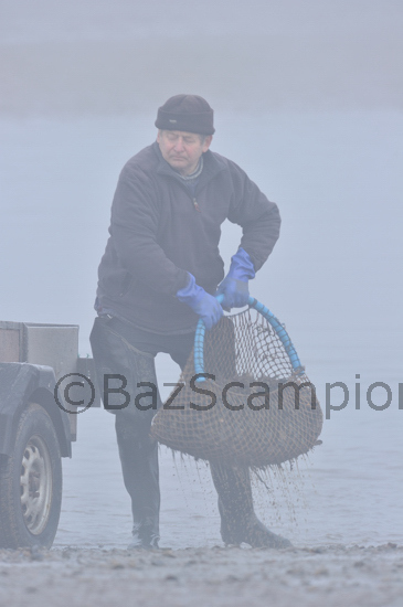 Cyril the Brancaster Mussel fisherman