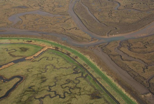 Aerial view of Norton Marsh