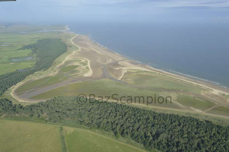 Holkham Bay and Pinewoods