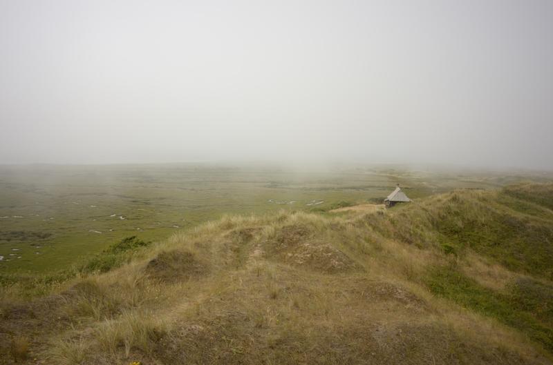 Fog at the Hut