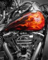 Harley Davidson Fire Tank