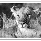 Kenya Portraits #3