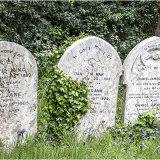 Rosary Cemetery #3