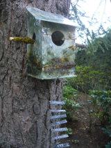 Nest-Houses