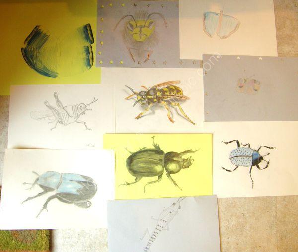 Pencils Class - Bugs Theme