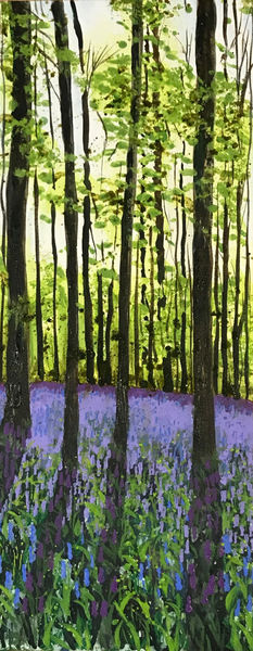 Bluebell shadows