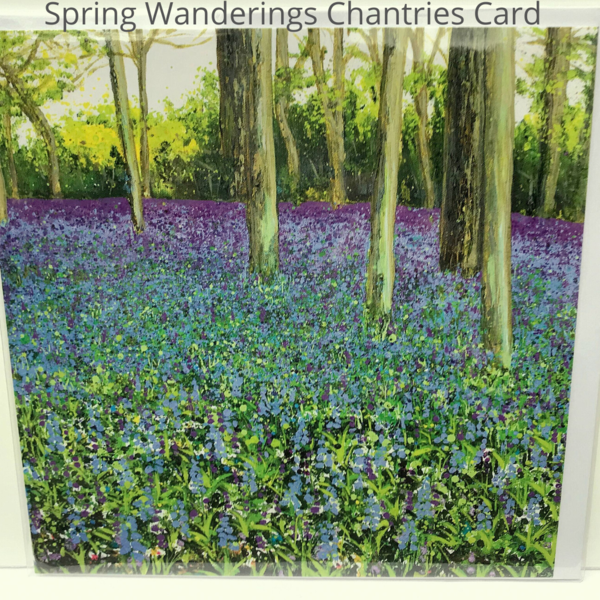 Bluebells Chantry woods guildford