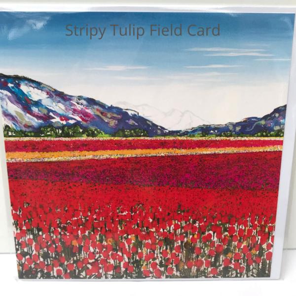 Stripy Tulip field
