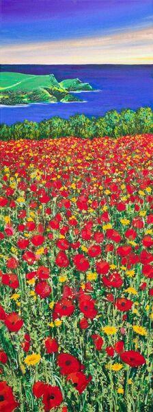 Poppyfield Poppy Poppies Polly Joke Cornwall West Pentire