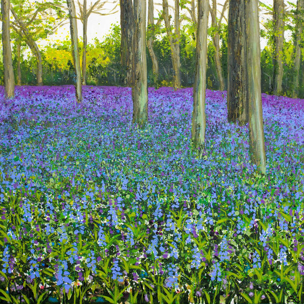 bluebells woodland spring Becca Clegg chantry wood Guildford