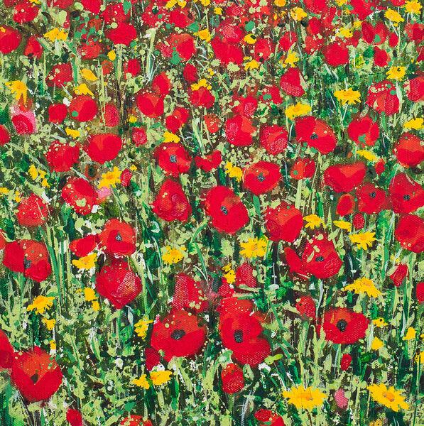 Poppies and Corn Marigolds at Polly Joke, Cornwall Detail Card