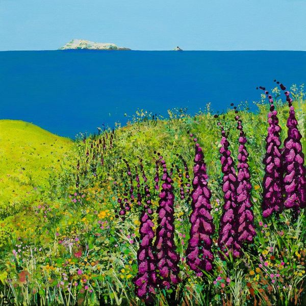 Foxgloves pembrokeshire coast Whitesands Beach Wales