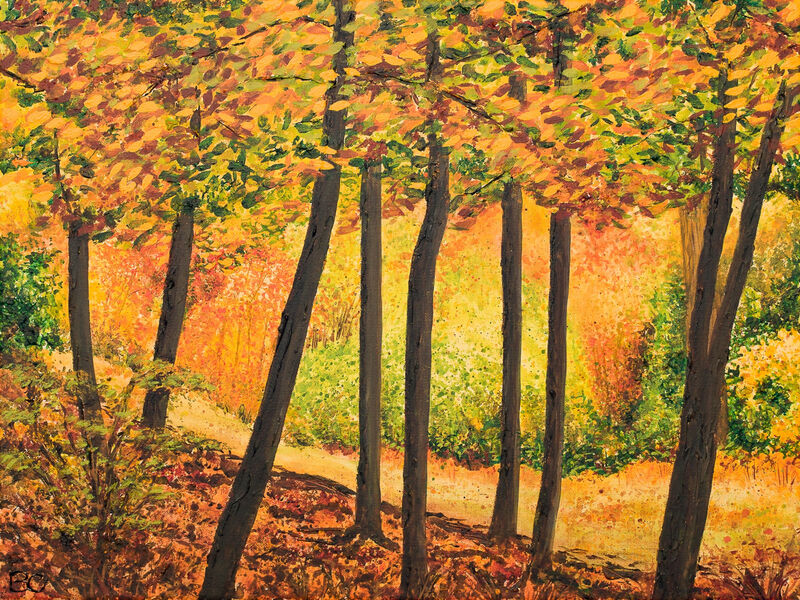 Autumn Trees Woodland Leith Hill Image Becca Clegg