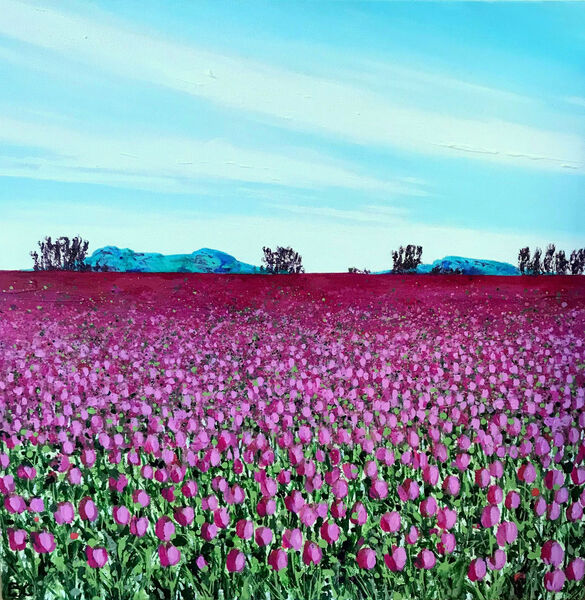Pink Tulips Blue Mountains