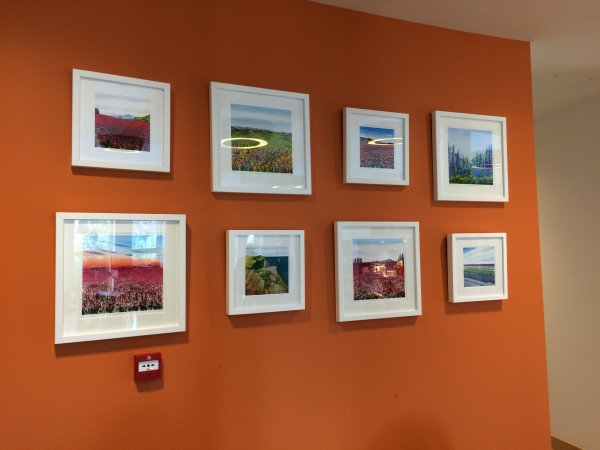 Becca Clegg Prints at the MacMillan Centre Redhill