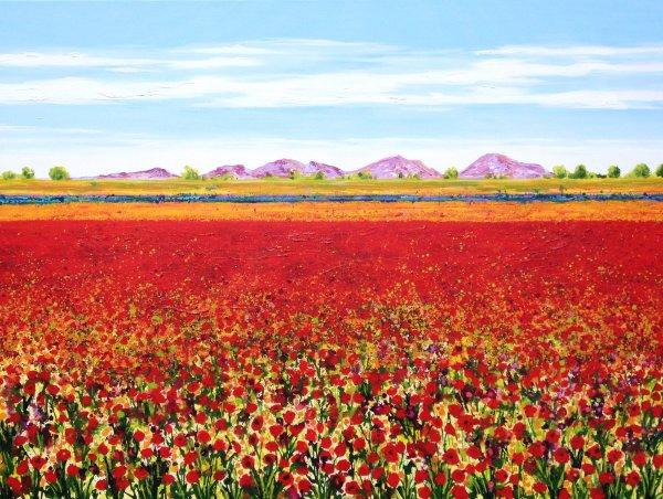 Poppies and Wildflowers: Landau Germany