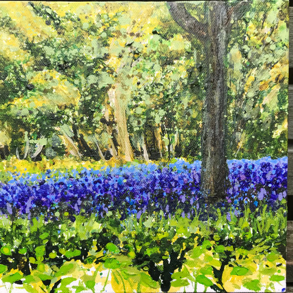 bluebells spring Becca Clegg Leith Hill Place