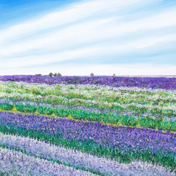 Lavender Field Giclee Print