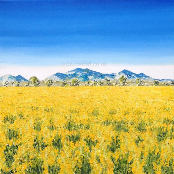 Rapeseed in the Maremma, Italy