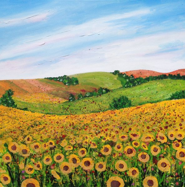 Sunflower Field card
