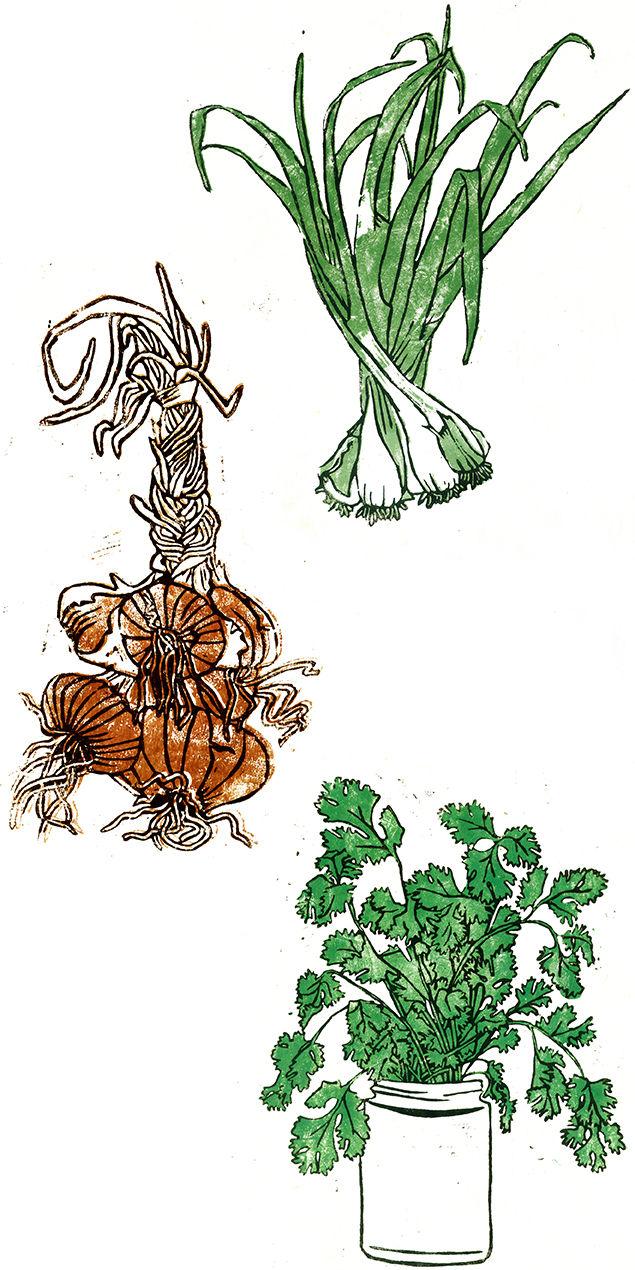 Zilli Green