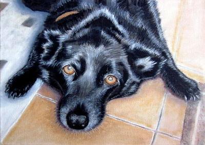 black labrador portrait, pet portrait by Bee Skelton