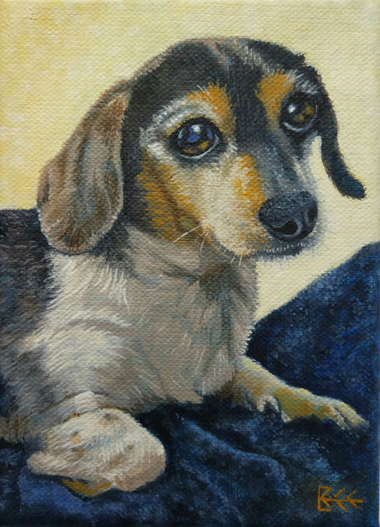 Jack Russel oil on canvas