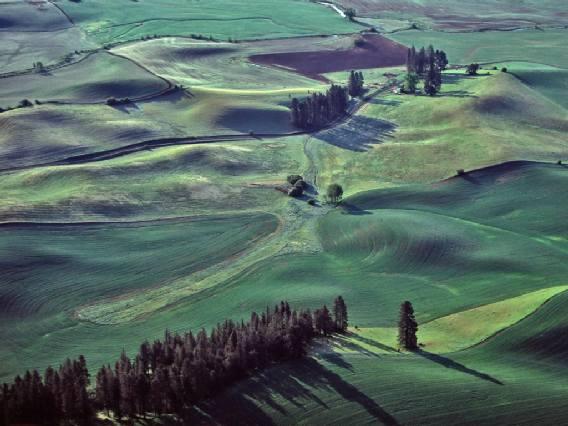 'Tuscan Landscape'