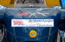 Second Place:  The Bluebird Project