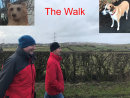 Second place:  The Walk