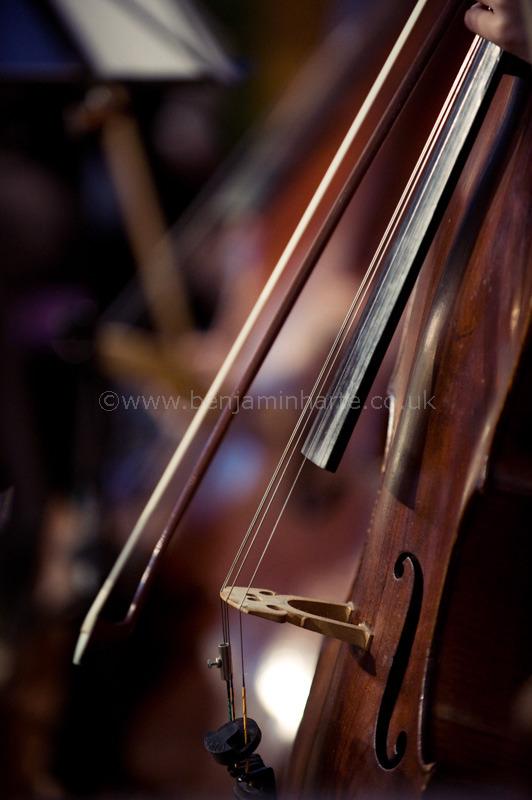 Cello-©www.benjaminharte.co.uk-36
