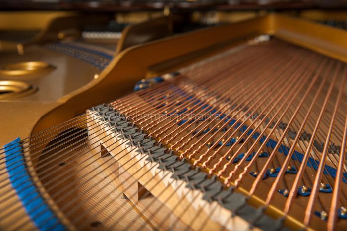 Grand-piano-©www.benjaminharte.co.uk-77