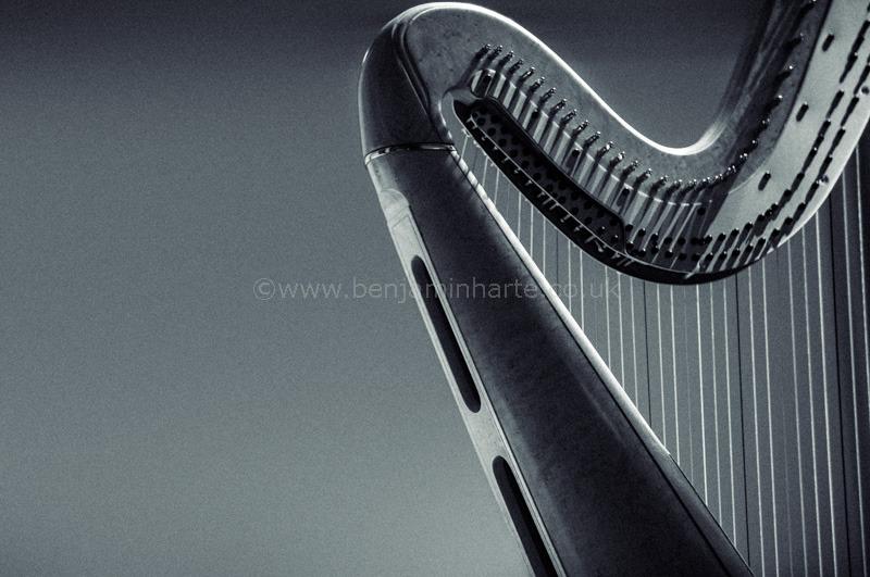 Harp-©www.benjaminharte.co.uk-63