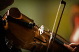 Violin-at-rest-©www.benjaminharte.co.uk-18