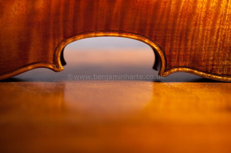 Violin-detail-©www.benjaminharte.co.uk-57