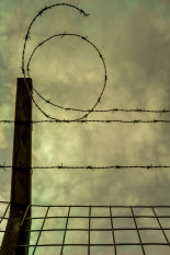 number-six-in-barbed-wire-©benjaminharte