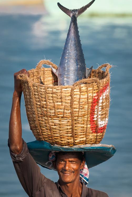 Fish Head, Kerala, India
