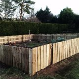 9m square produce garden with gate, wire mesh buried around base to keep out rabbits!