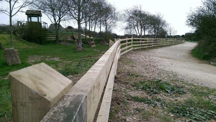 simple post & rail fencing