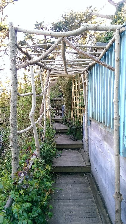 Rustic wood pergola fixed with exterior screws for a sturdy finish