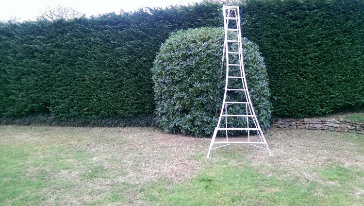 3.8m fully adjustable tripod ladder means tall hedges can be accessed safely